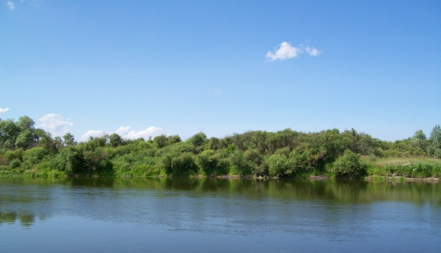 Река Миасс является приток