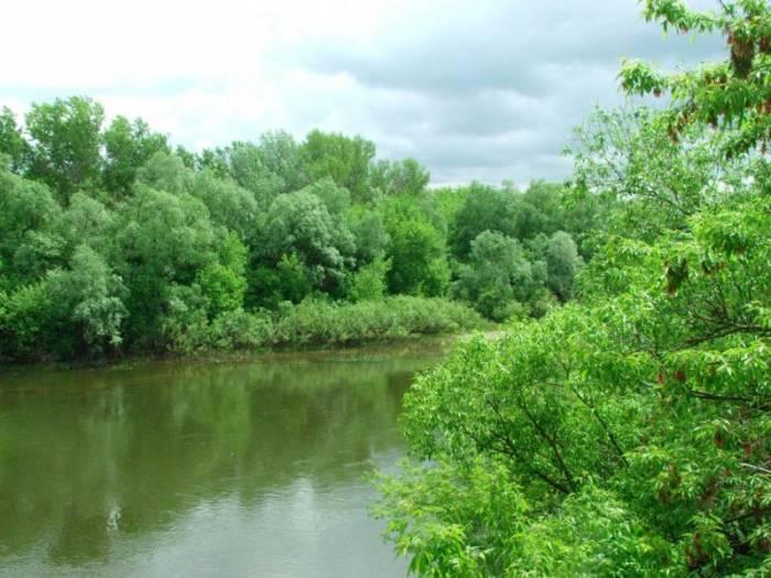 Река Ворона на карте